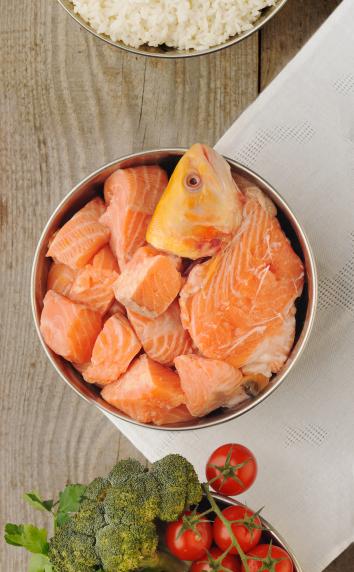 salmon & veggies for dogs