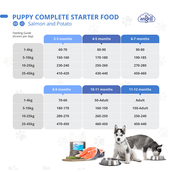 how much to feed a puppy chart.